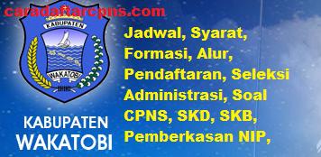 44+ Formasi cpns 2021 kabupaten wakatobi information